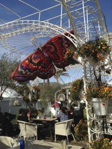 Schmetterlinge schmücken den Garten des Atzaró
