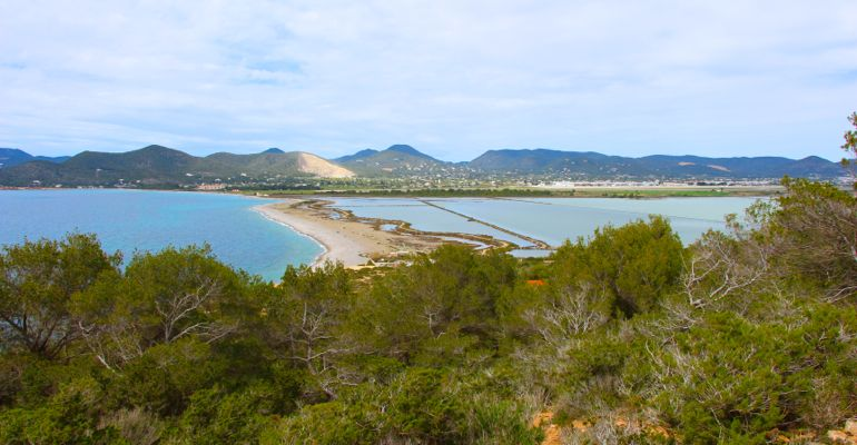 Der Naturpark Ses Salines