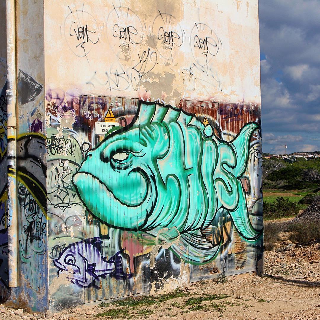 Nice graffiti art next to the beach near Sa Figuera ⛱🖌 #graffiti #ibiza #instaart #fish #art #green #colour #ocean #island #ibiza2016 #spain #instaspain #travel #traveleurope #igersibiza #ibz #ibzconnect #baleares #ibizadiary #figueraborda #ibizagraffiti, Figuera Borda