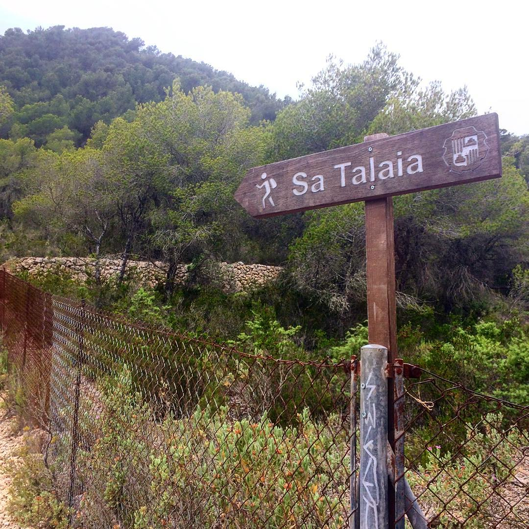 The cloudy days are perfect for a hiking trip up the hills  #hiking #clouds #ibiza #satalaia #mountains #ibiza2017 #hikingibiza #june #spain #nature #ibz #ibizadiary #ibizanature #hiketheworld #instahike, Sa Talaiassa