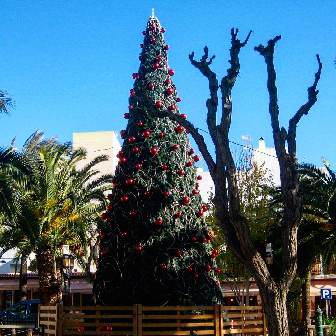 Happy Christmas to all of you from Santa Eularia 🎅🎄#xmas #ibiza #tree #santaeulalia #ibizaxmas #christmas #christmastree #baleares #xmas2017 #bluesky #ibizawinter #picoftheday #green #blue #eastcoast #spainwinter #celebration #ibz #ibizadiary, Santa Eularia, Ibiza