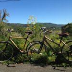 Bamboo Bikes Ibiza