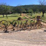Fahrradtour auf Ibiza mit Bambusbikes