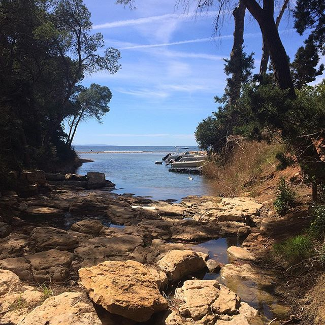 "🌞 Good to see the river ""Torrent d'Arabí"" at Niu Blau full of water 🌎 #nature #river #water #ibiza #instaibiza #ibizanature #ibiza2018 #blue #picoftheday #like #good #instagood #spain #europe #instatravel #ibizadiary, Playa Niu Blau, Santa Eulalia, Ibiza"