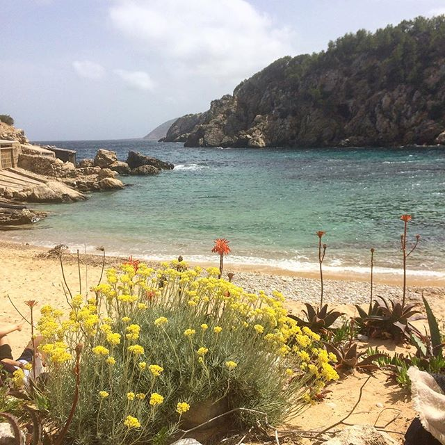 Still one of the quite beaches on Ibiza, even in the high season 👍 No busses, no parking area at the beach 🚳⛵️ #beachday #ibiza #offday #goodtimes #flowers #nature #ibz #baleares #instatravel @ibiza.official  #friendsday @inside_ibiza #ibizaholiday #ibiza2018 #ibizadiary, Cala d'en Serra