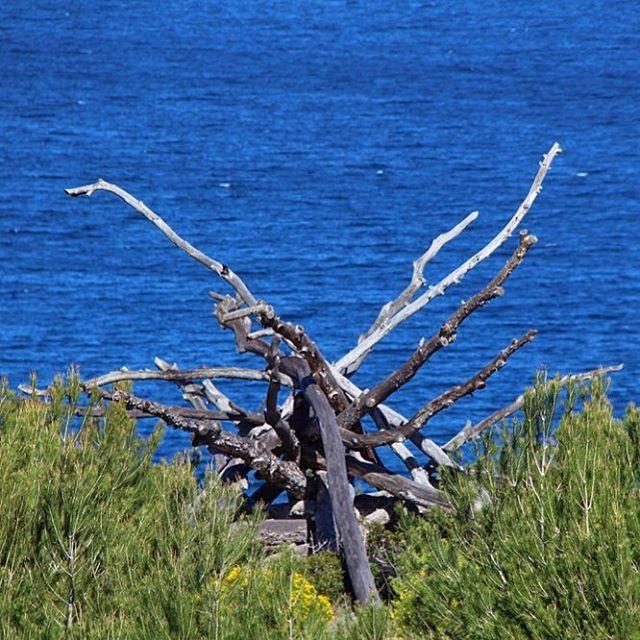 Beautiful art, created by nature! @nature #nature #ibiza #seaview  #beautiful #ocean #creativity #perfection  @ocean @ibiza.official  @nature_fotografias #blue #green #blogger #naturelovers #ibizadiary, Cala Xarraca-Ibiza