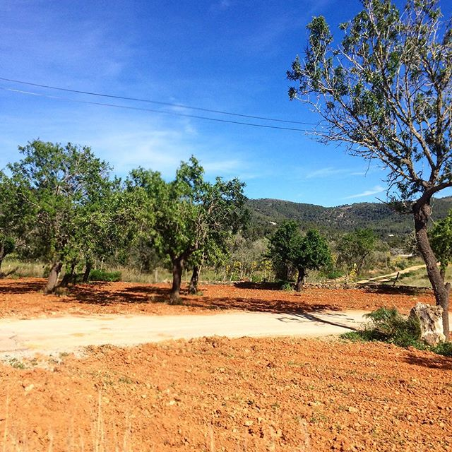 It's absolutely great to have a little timeout in the highseason months of July and August! There are many nice, quiet places in the north, you should explore on a walk trough the campo area! 🌞 #timeout #relax #nature 🌳 #backcountry #countryside #ibizacampo #outback #redearth #ibizanature #ibiza2018 #loveibiza #august #instahike #ibizadiary @backcountry @travelbloggeres, Sant Vicent de sa Cala