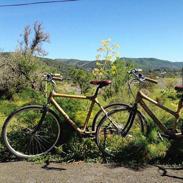 Great way to explore the island! Thanks to @cangatoibiza for showing us the backcountry on his phantastic @urbambikes 🚴♂️ #biketour #ibiza #bamboo #cangato 🌴 #backcountry #instablog #bloggers #nature #baleares #ibizadiary #ibizatour #ibizaoutdoor #travel #holiday #instatravel, Cuadras Sa Rota