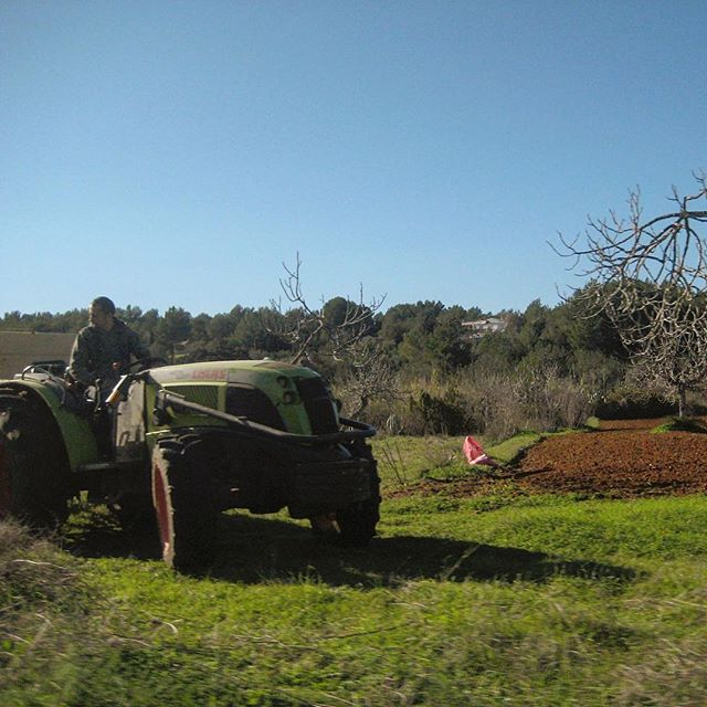 Hard working farmer in the backcountry  #farmwork #worker #farming #outdoor #nature #ibizanature #bluesky #green #instagood #blogger #weekend #ibiza #ibizadiary #ibizafarming, Sant Miquel de Balansat