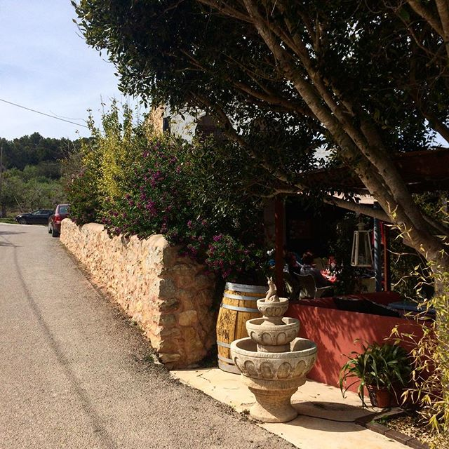 Check out the nice restaurant on the other side of this hedge 🥘🍀 #ibiza #restaurant #cansulayetas #restaurant @restaurantsdebalears 🥦 #food #foodporn #foodblogger #goodtimes #instaibiza #ibizalovers #ibizatravel #ibizadiary #ibizalife, Can Sulayetas
