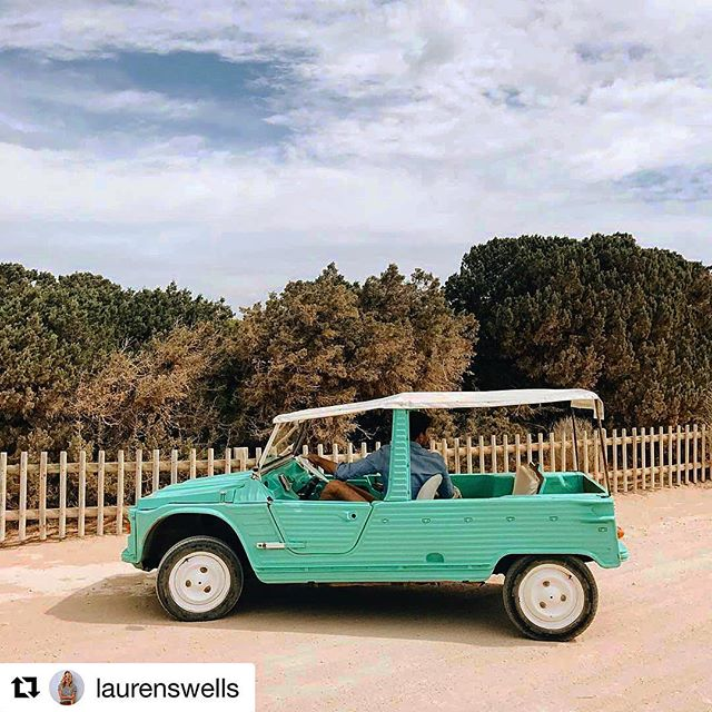 The car of our dreams 🚗 Hopefully one day we can cruise on Formentera in our own Citroën Mehari 😍 Thanks to @laurenswells for the great shot! #mehari #dream #formentera #cruisin #instacar #holiday #car #oldtimer #green @mehari2cv #baleares #carblog #ibizadiary @citroen #formenteralovers, Formentera