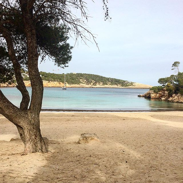 Tranquility in wintertime ☮️ Love this quite months on the island 💟 #peace #quite #ibiza #portinatx #ibizawinter #beach #playa #like @ibizaloversclub #ibizalovers @baleares_islas #baleares #blogger #travel #instatravel #places #ibizabeach #ibizadiary, Portinatx
