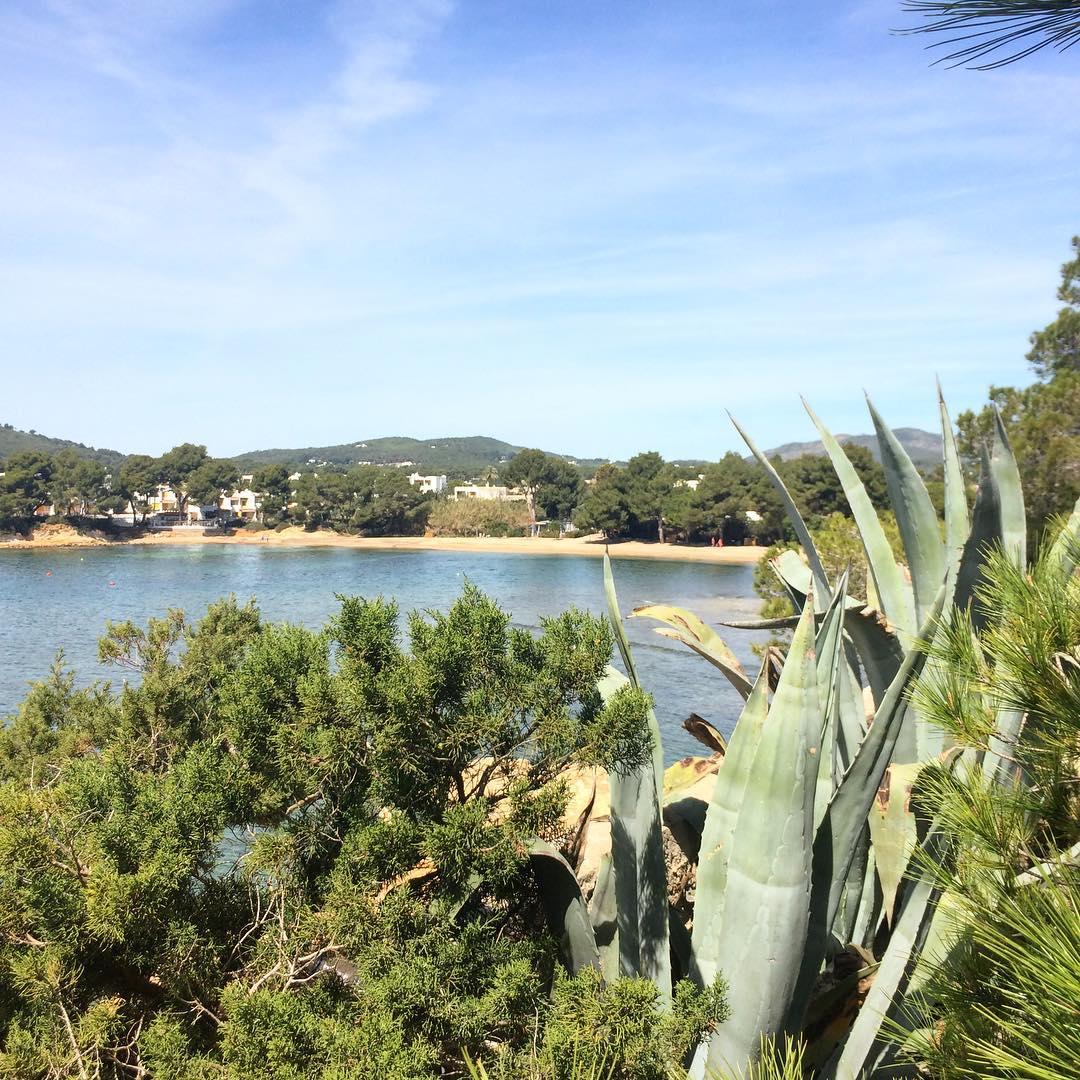 Monday motivation! Get out of the office in time to head over to the beach!  #monday #lunes #ocean #nature #españa #europe #traveltheworld #balearen #balearics #igersespaña @greenpeace_esp #green #ibiza #ibiza2019 #ibizadiary, Playa Niu Blau, Santa Eulalia, Ibiza