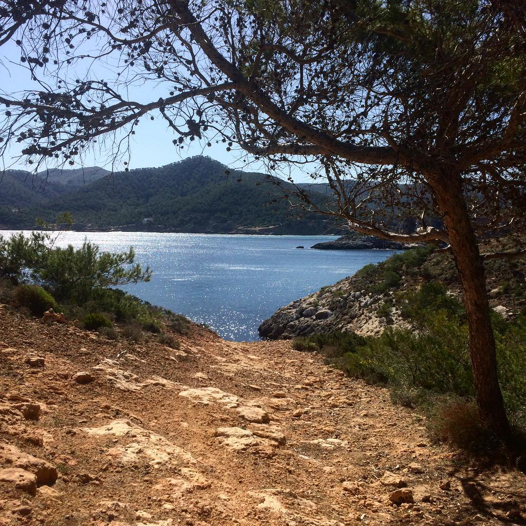 What a view 😻 Offroad adventure in the north of Ibiza! #offroad #dirtroads #adventure #ibiza #ibizwinter #nature #travelphotography #traveltheworld #travelholic #españa #catalunya #baleares @igersbalears #igersibiza #ibizadiary, Portinatx
