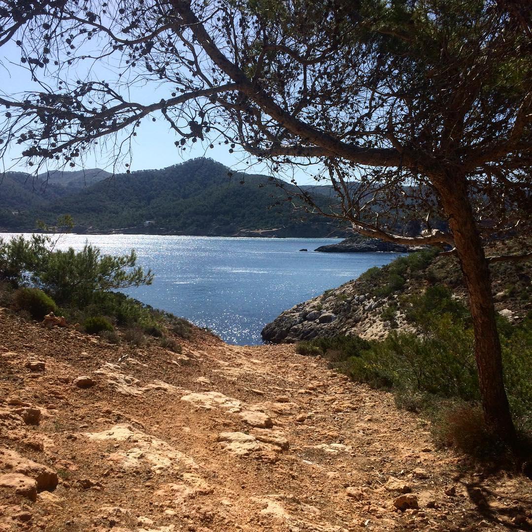 What a view  Offroad adventure in the north of Ibiza! #offroad #dirtroads #adventure #ibiza #ibizwinter #nature #travelphotography #traveltheworld #travelholic #españa #catalunya #baleares @igersbalears #igersibiza #ibizadiary, Portinatx