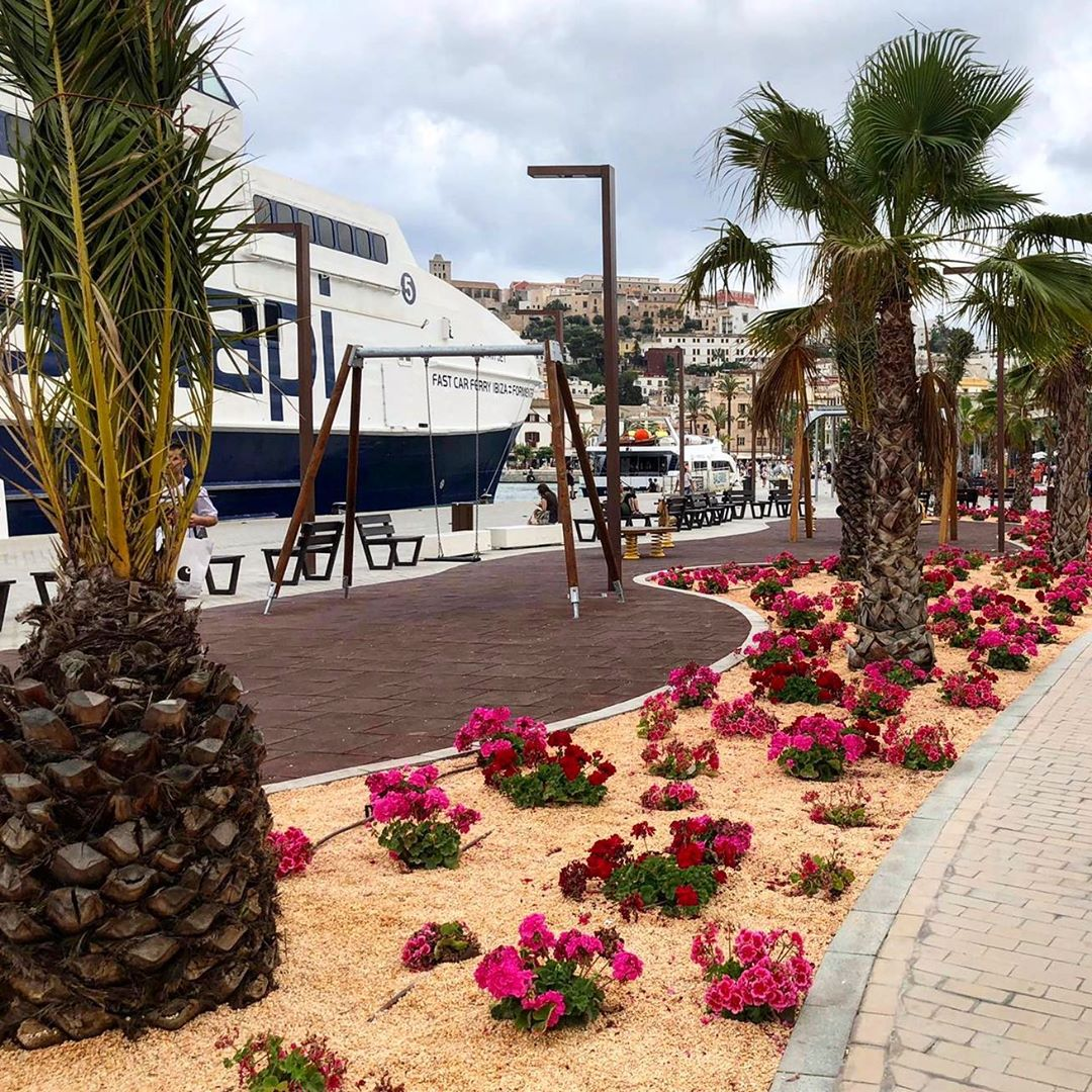 How do you like the new style of the Eivissa harbour promenade with all the flowers and palmtrees? 🌺🌴 #Ibiza #flowers #esplanade #instagood #baleares #eivissa #ibiza2019 #ibizasummer #flores #instastyle #instanew #instaisland #spain #ibz #ibizadiary, Marina Botafoch, Ibiza