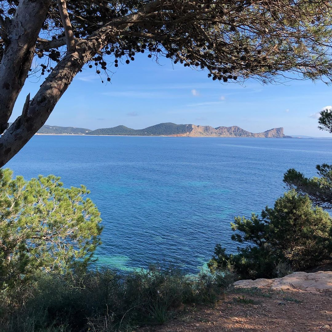 No filter needed, when mother nature gives you this view! 🌍 There's so many nice places to discover on Ibiza and the temperatures in Februar are perfectly fine for a lot of hiking! #ibiza #nature #mothernature #ibiza2020 #instahike #seaview #instatree #picoftheday #naturephotography #travel #baleares #instaspain #ibzlovers #ibizagram #ibizadiary #travelbaleares #nofilter #truecolors, Sa Caleta