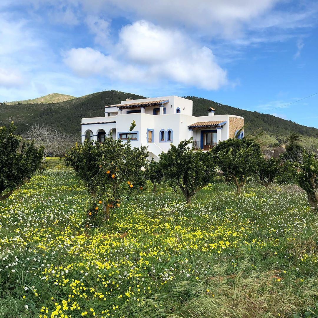 When the whole island is under lockdown, this pretty pictures will bring the beauty of Ibiza to your screens! Enjoy! #ibiza #ibizapictures #ibizalockdown #staythefuckhome #ibiza2020 #instaibiza @ibiza_fotoss #ibizafotoss @ibizaplus #ibizaplus #igersibiza #instaspain #ibizadiary, Ibiza, Spain