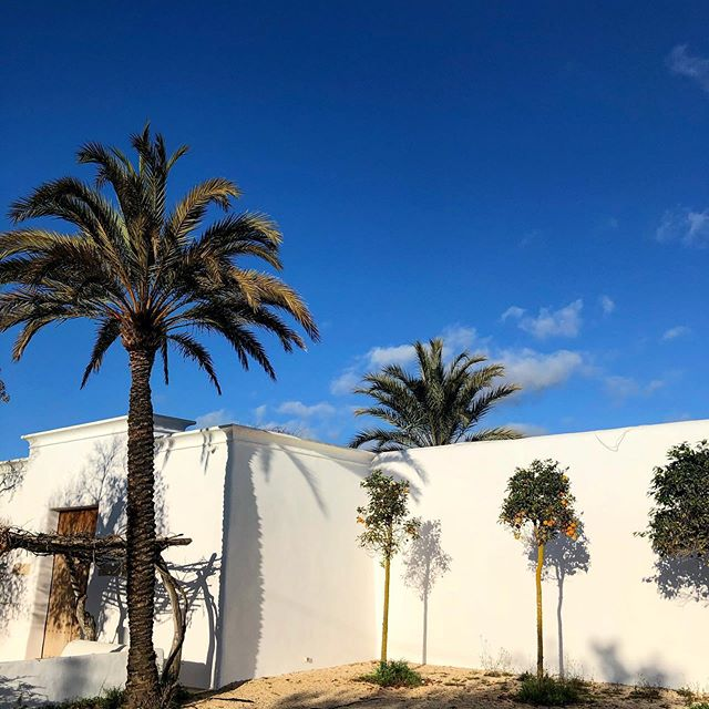 This is the basement of @blakstadibiza designers. We always have to stop, when passing by the beautiful campo house and have a look at it 📸 #instaibiza #blakstadibiza #design #architecture #baleares #style #ibizastyle #ibizacampo #finca #palmtrees #white #whitehouse #ibizahouses @ibizaxperience @ibizastylemagazine #ibizadiary, Ibiza, Spain